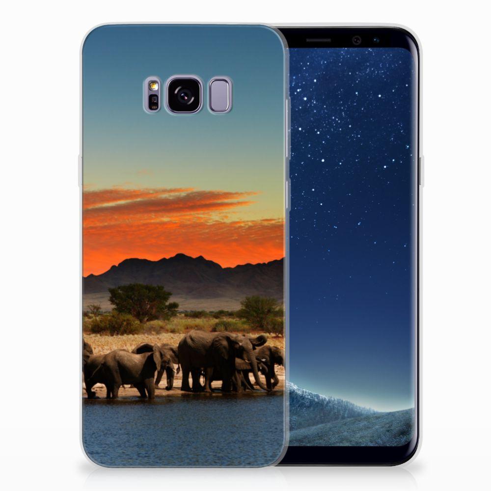 Samsung Galaxy S8 Plus TPU Hoesje Design Olifanten