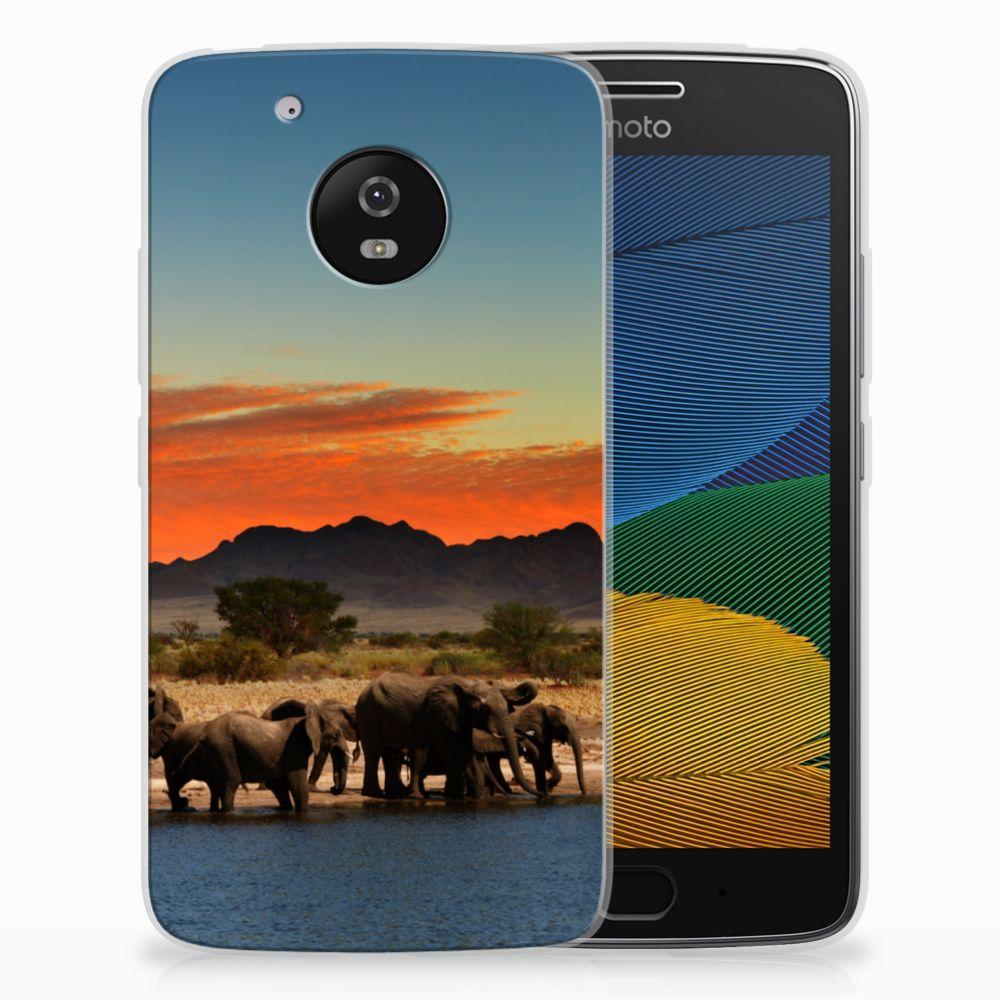 Motorola Moto G5 TPU Hoesje Design Olifanten