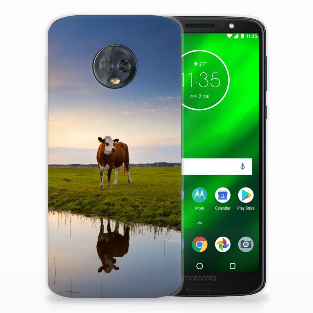 Motorola Moto G6 Plus TPU Hoesje Design Koe