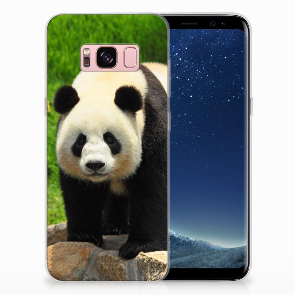 Samsung Galaxy S8 TPU Hoesje Design Panda