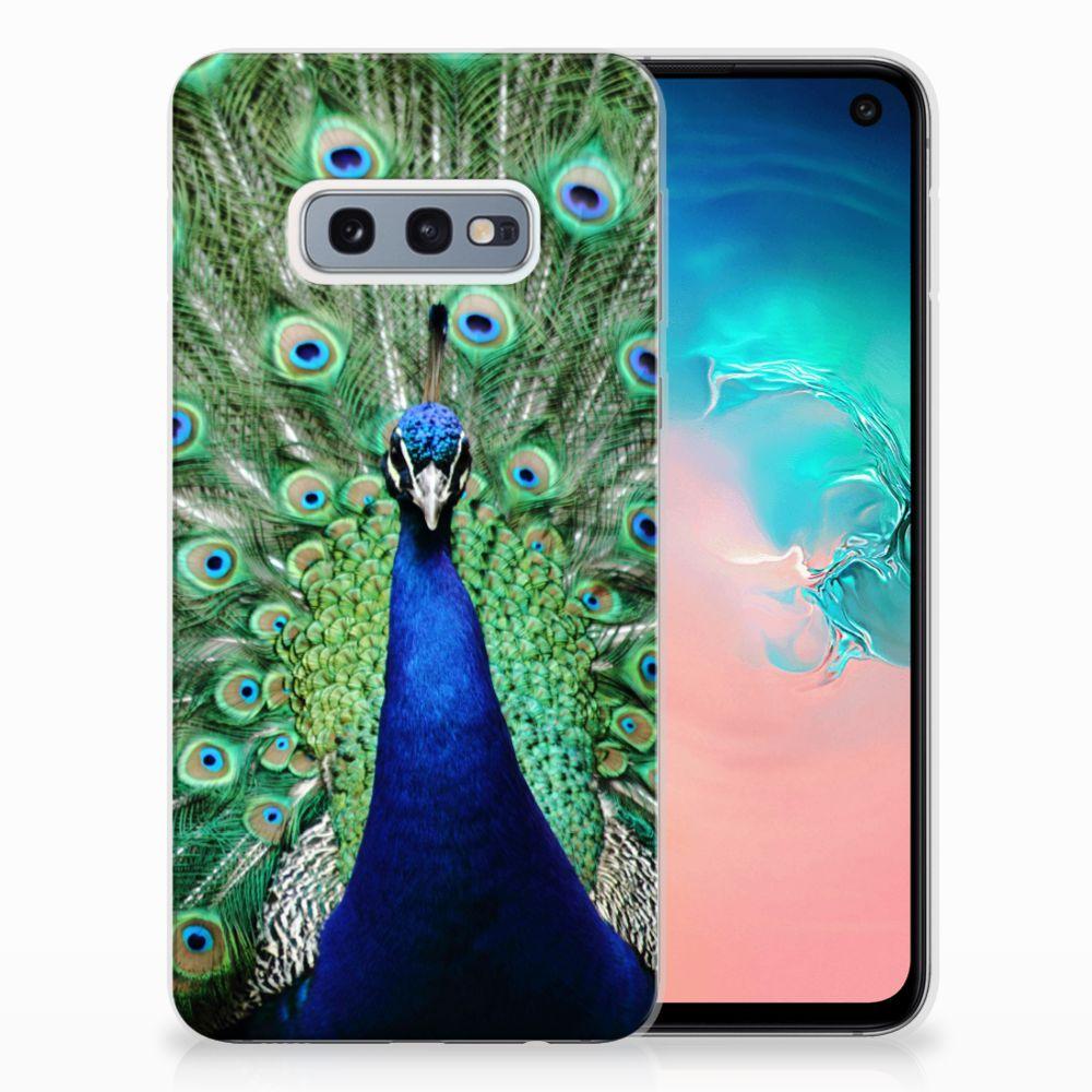 Samsung Galaxy S10e TPU Hoesje Design Pauw