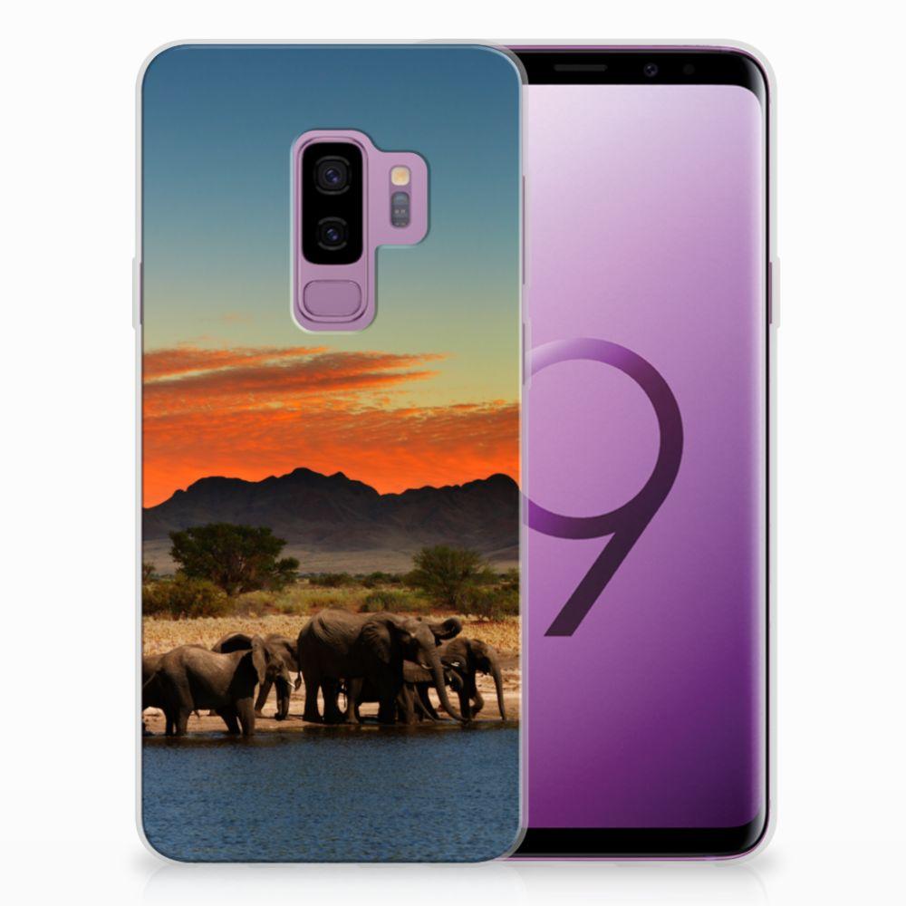 Samsung Galaxy S9 Plus TPU Hoesje Design Olifanten