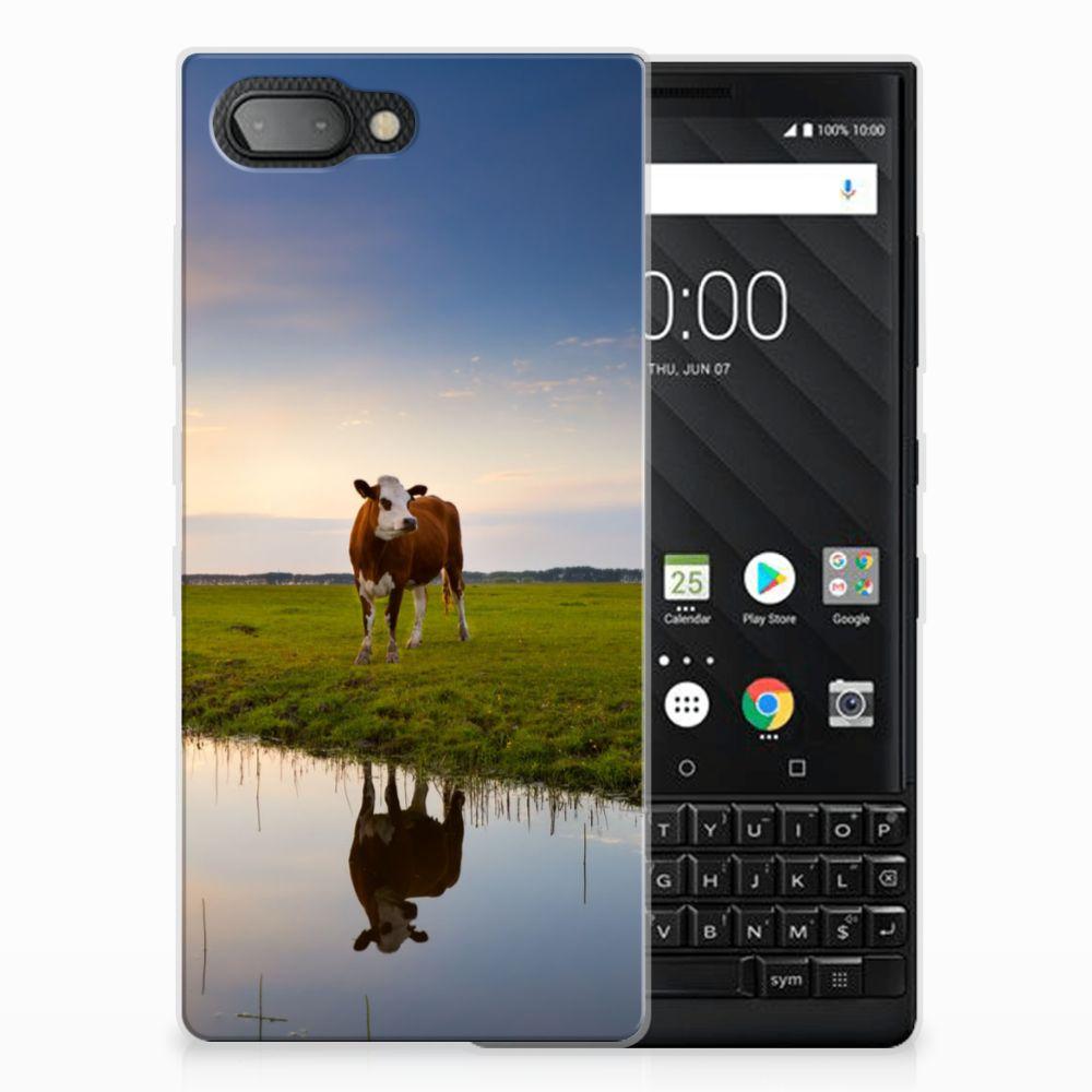 BlackBerry Key2 TPU Hoesje Design Koe