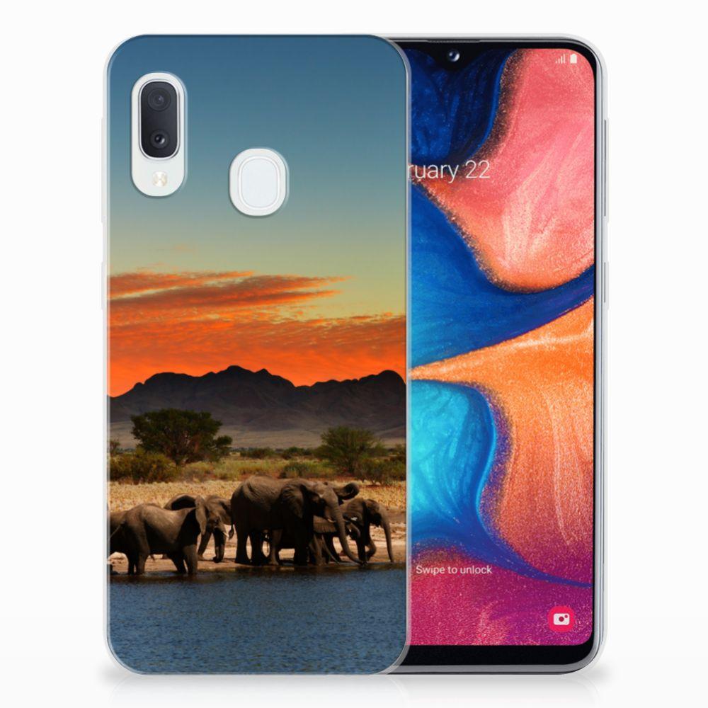 Samsung Galaxy A20e TPU Hoesje Olifanten