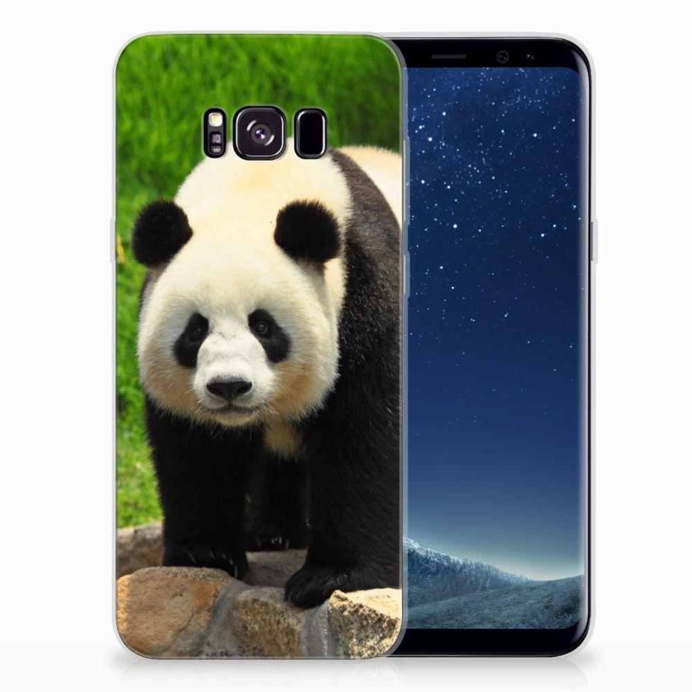 Samsung Galaxy S8 Plus TPU Hoesje Panda