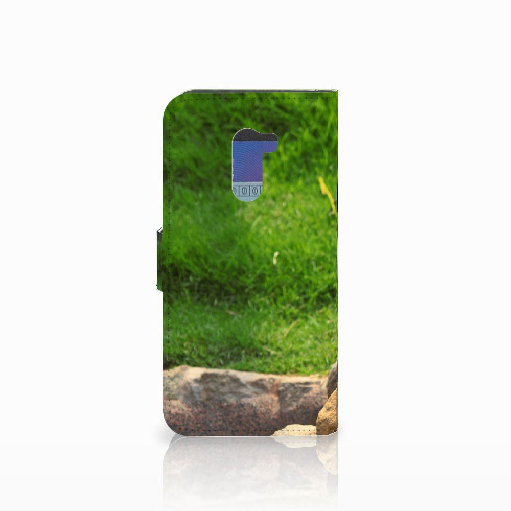 Xiaomi Pocophone F1 Telefoonhoesje met Pasjes Panda