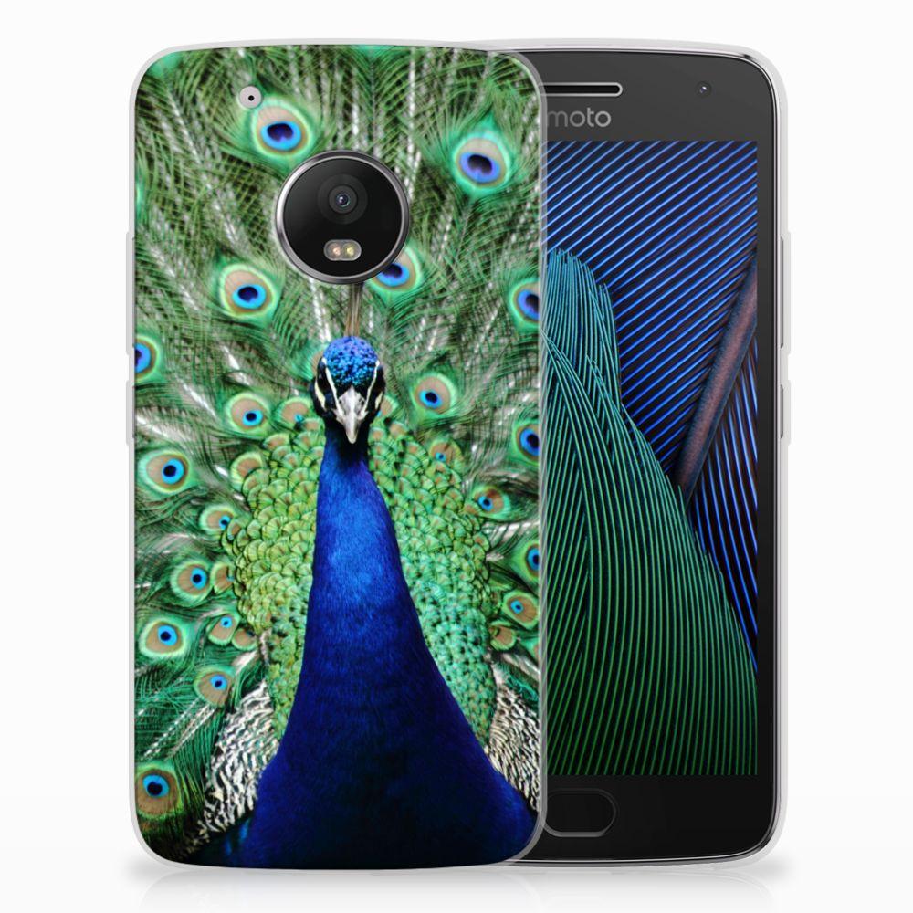 Motorola Moto G5 Plus TPU Hoesje Pauw