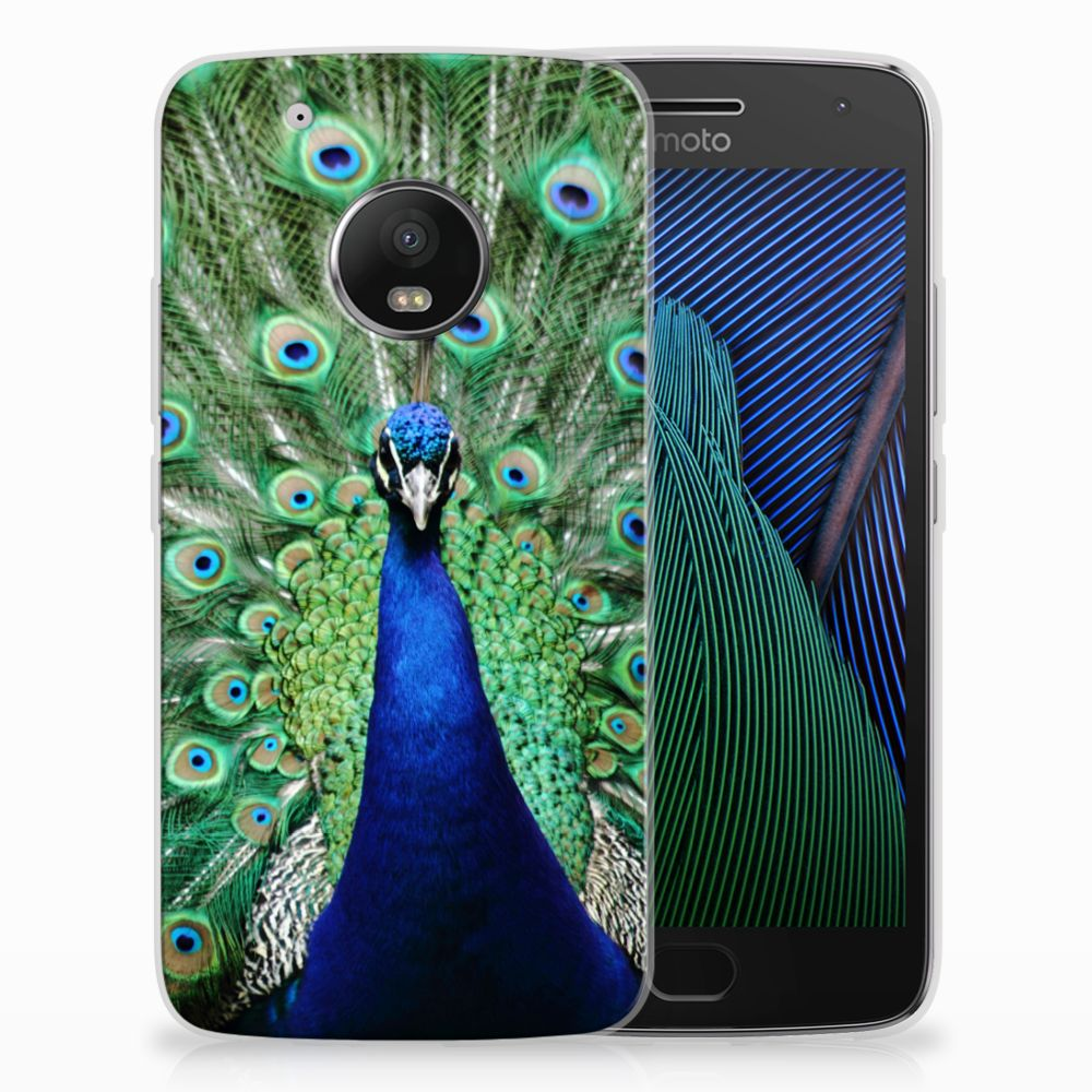 Motorola Moto G5 Plus TPU Hoesje Design Pauw