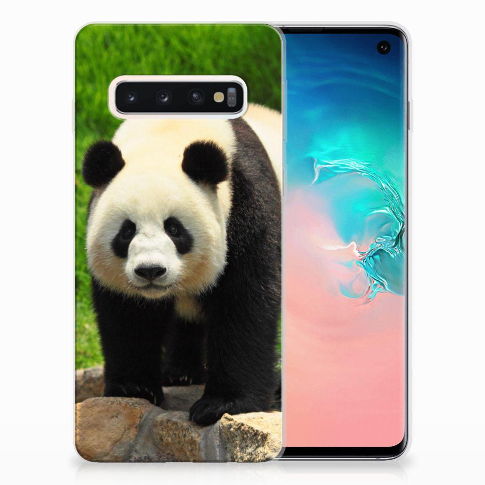 Samsung Galaxy S10 TPU Hoesje Design Panda