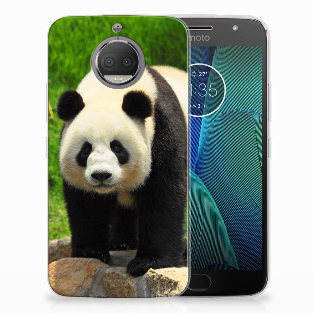 Motorola Moto G5S TPU Hoesje Panda