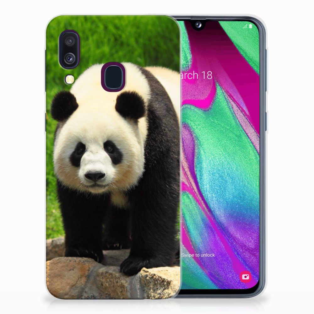Samsung Galaxy A40 TPU Hoesje Design Panda