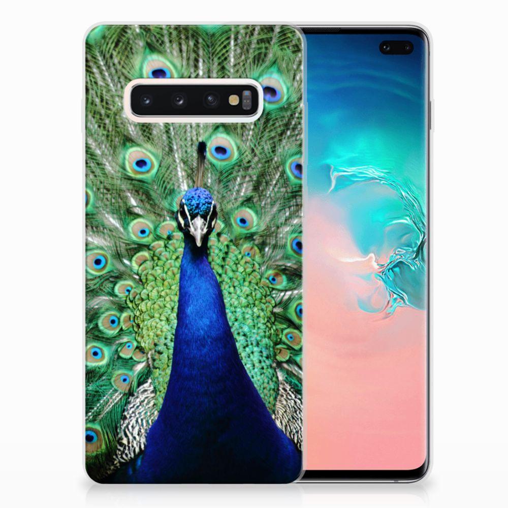 Samsung Galaxy S10 Plus TPU Hoesje Pauw