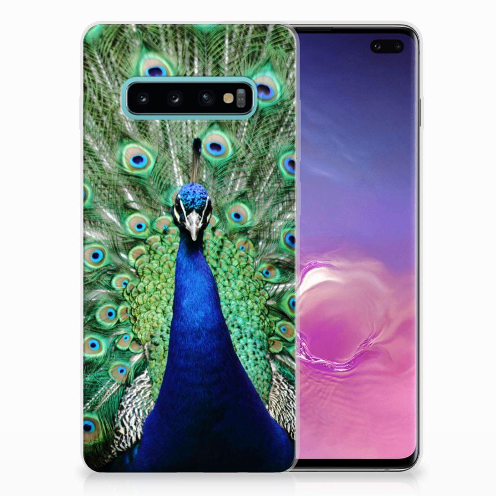 Samsung Galaxy S10 Plus TPU Hoesje Design Pauw