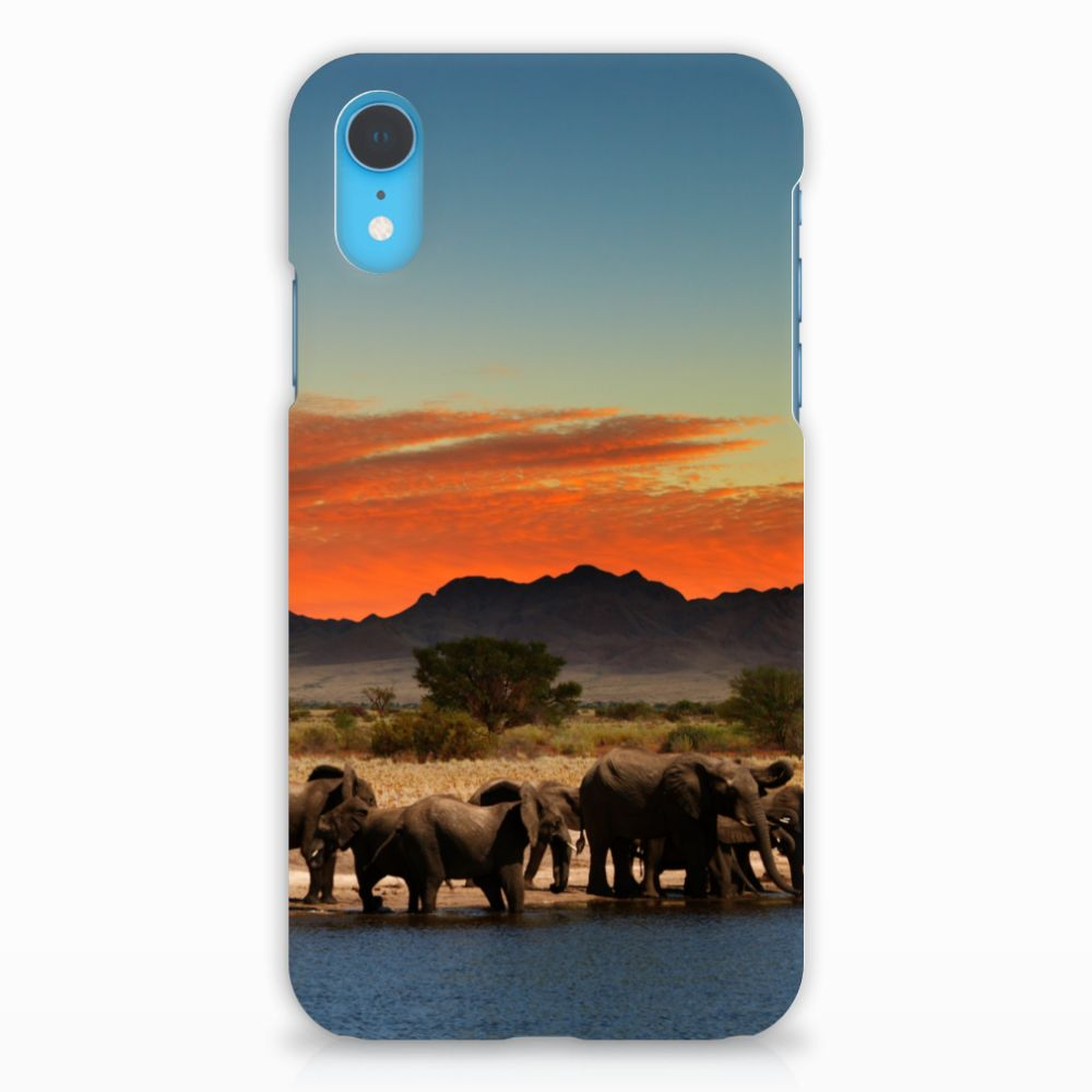 Apple iPhone XR Hardcase Hoesje Design Olifanten