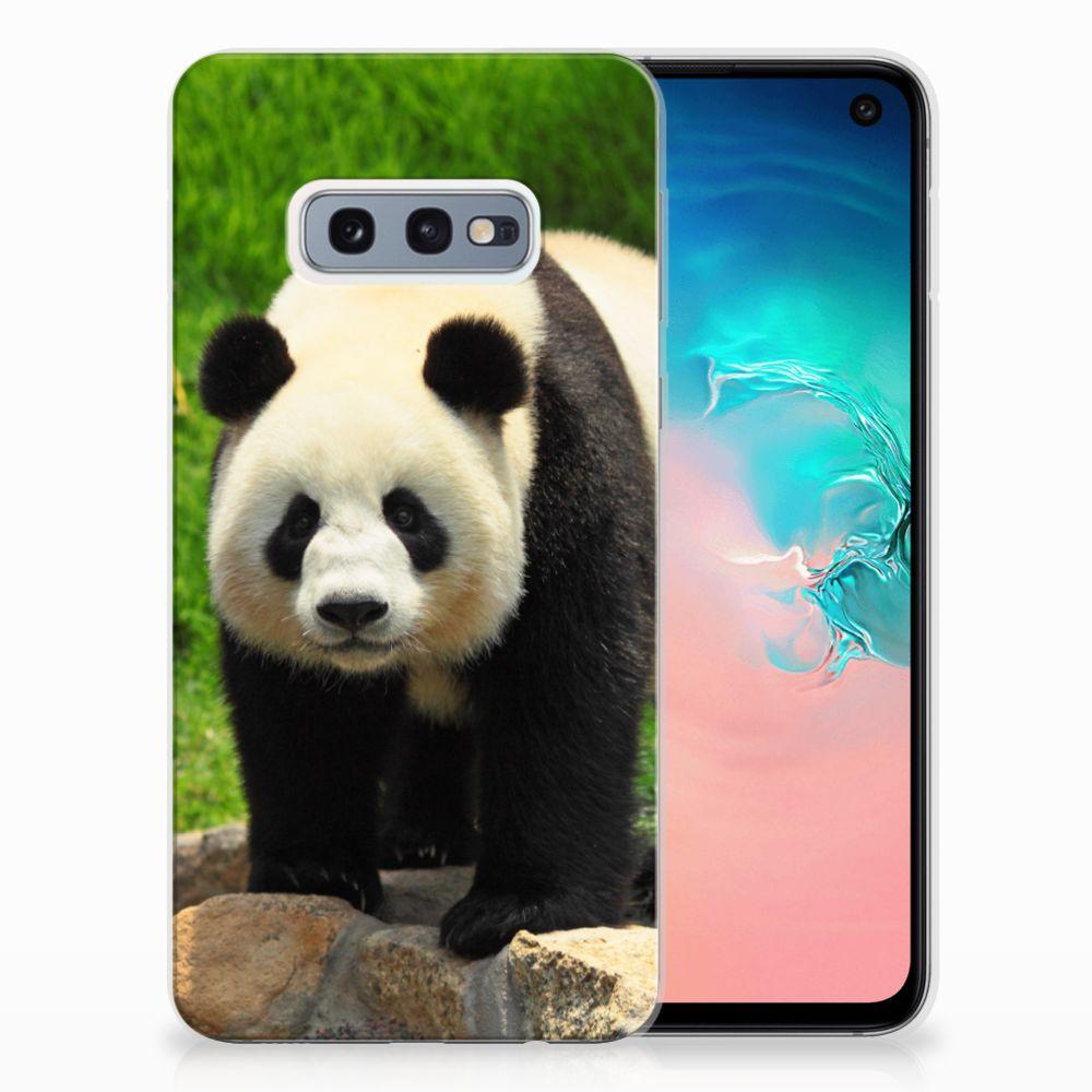 Samsung Galaxy S10e TPU Hoesje Design Panda