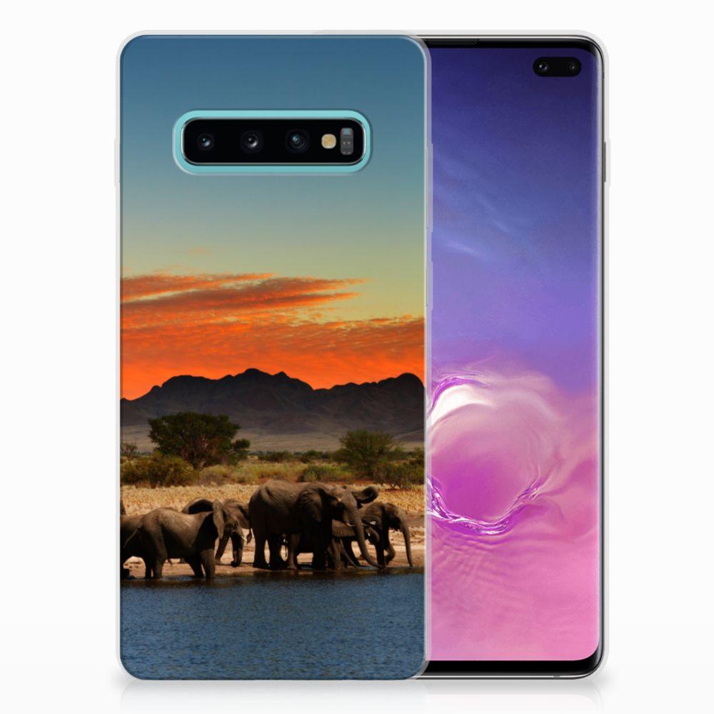 Samsung Galaxy S10 Plus TPU Hoesje Design Olifanten