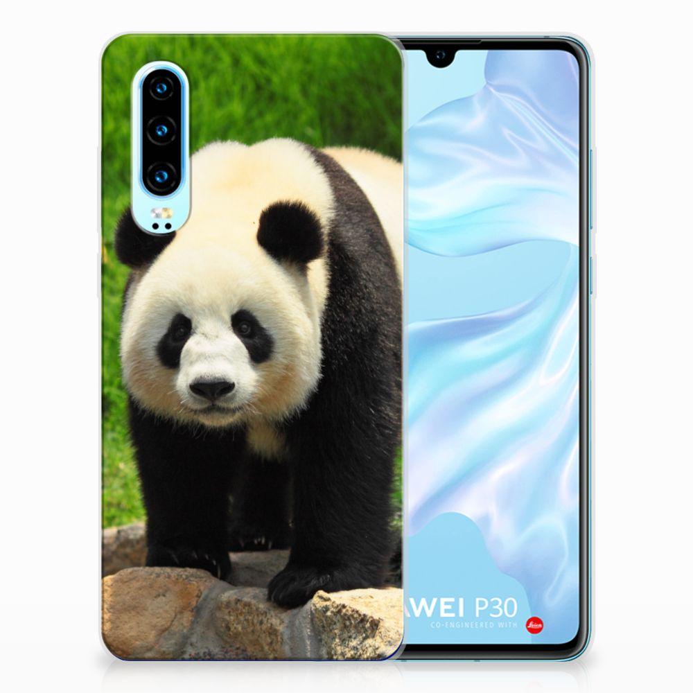 Huawei P30 TPU Hoesje Panda