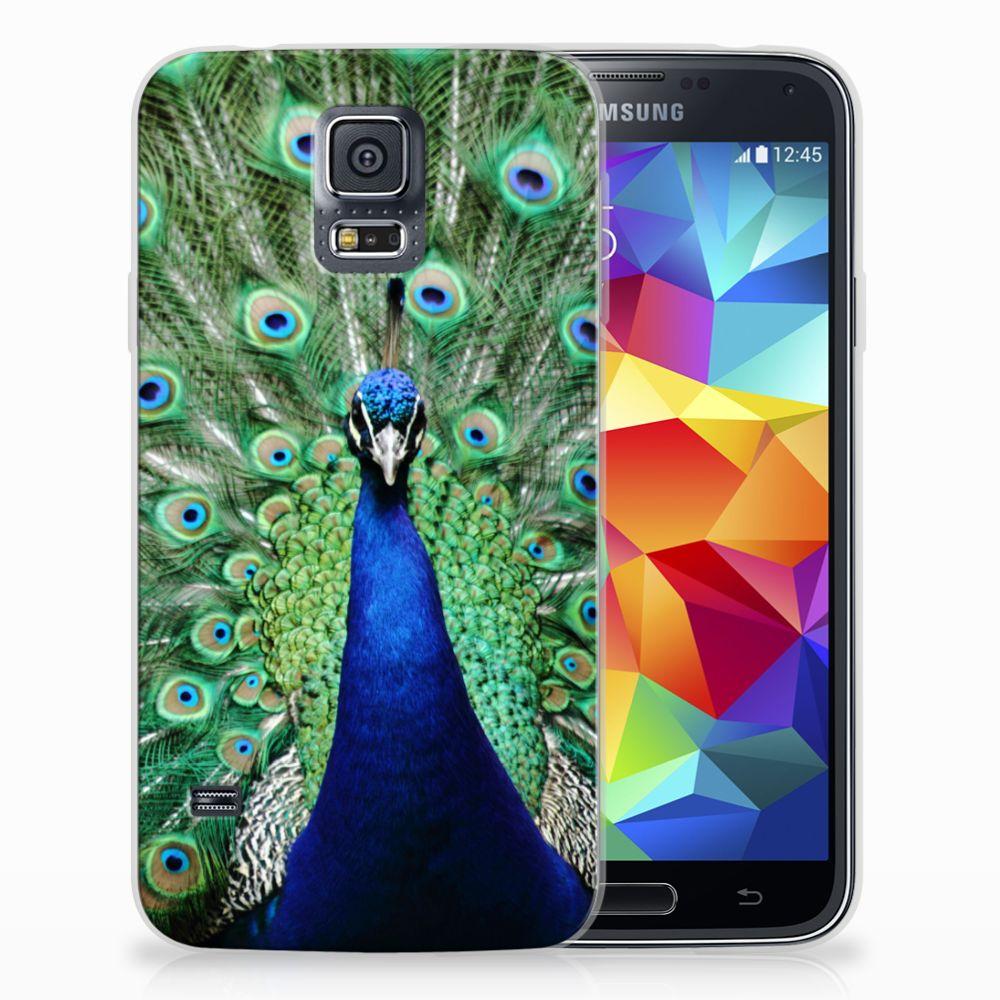 Samsung Galaxy S5 TPU Hoesje Design Pauw
