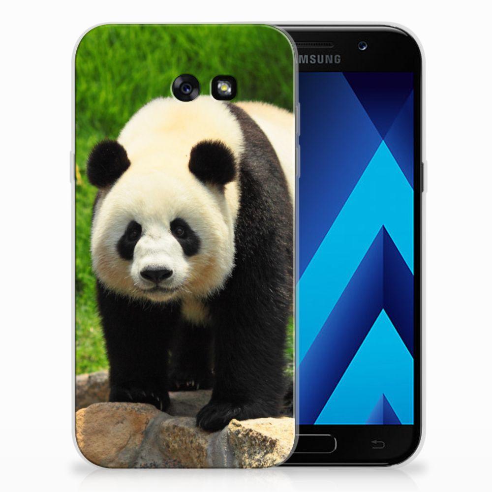 Samsung Galaxy A7 2017 TPU Hoesje Design Panda