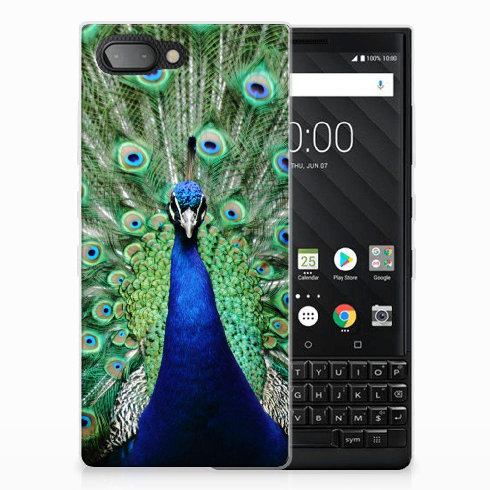 BlackBerry Key2 Leuk Hoesje Pauw