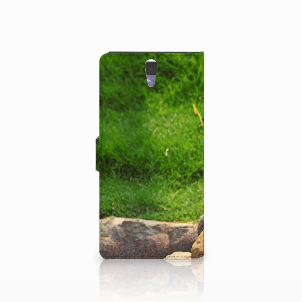 Sony Xperia C5 Ultra Telefoonhoesje met Pasjes Panda