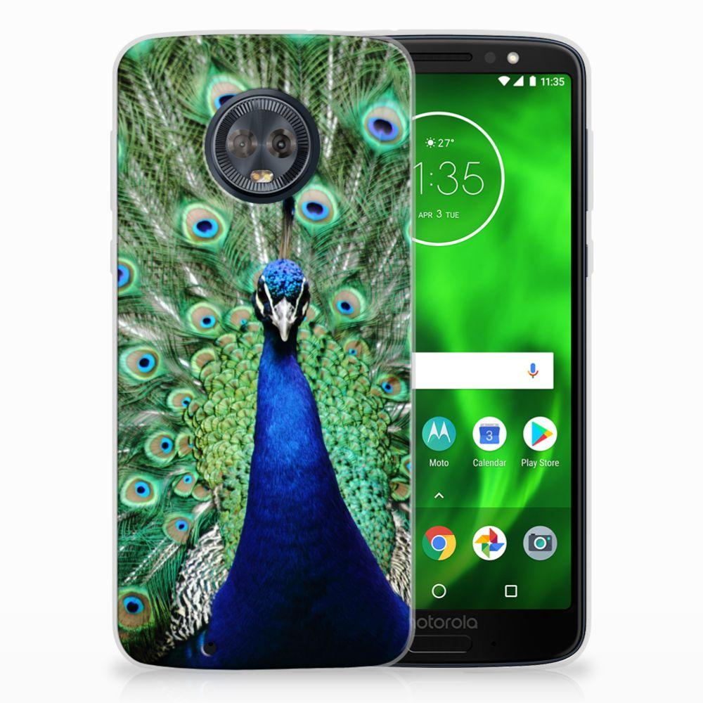 Motorola Moto G6 TPU Hoesje Design Pauw
