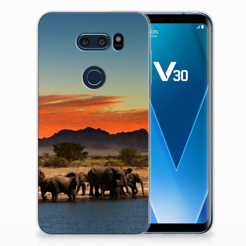 LG V30 TPU Hoesje Design Olifanten