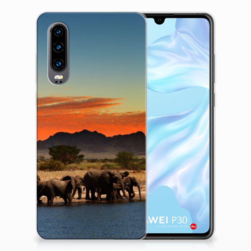 Huawei P30 TPU Hoesje Design Olifanten