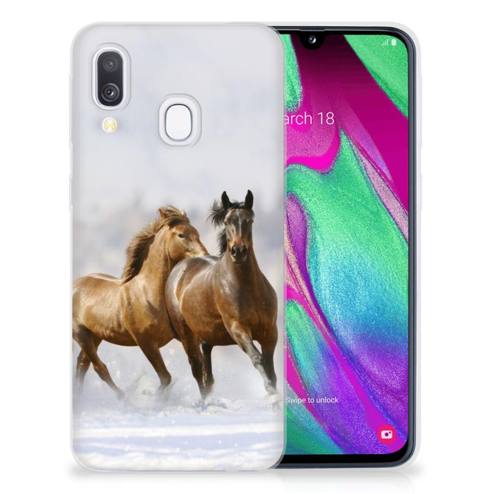 Samsung Galaxy A40 TPU Hoesje Paarden