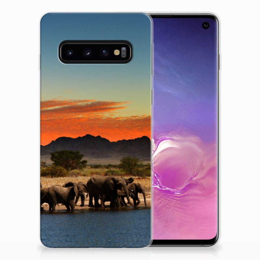 Samsung Galaxy S10 TPU Hoesje Olifanten