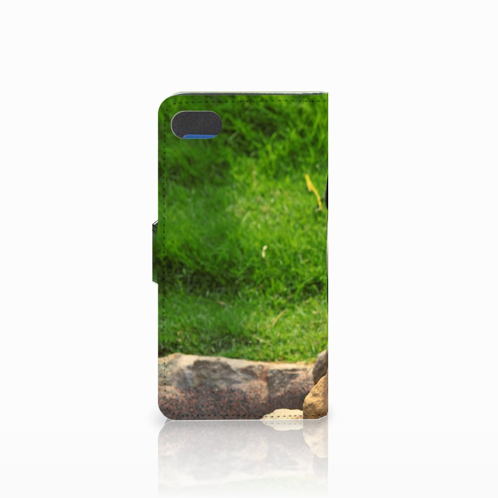Huawei Y5 2018 Telefoonhoesje met Pasjes Panda