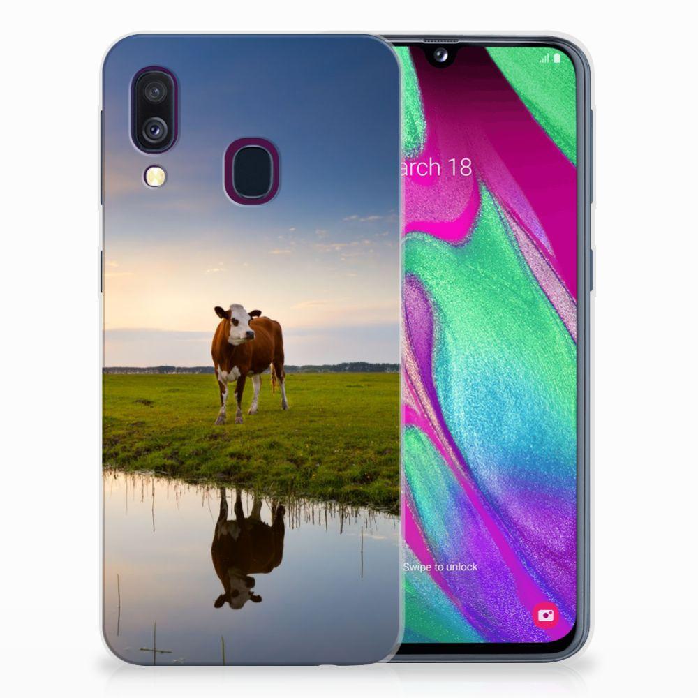 Samsung Galaxy A40 TPU Hoesje Koe
