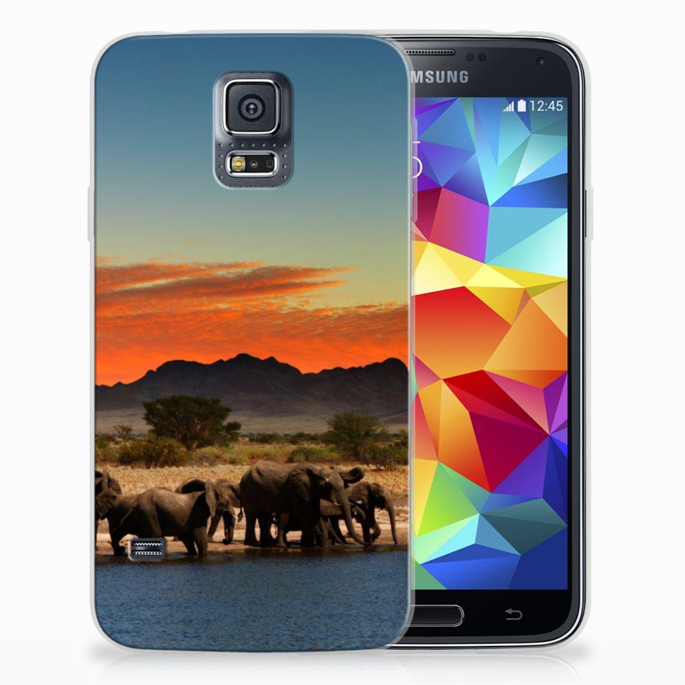 Samsung Galaxy S5 TPU Hoesje Design Olifanten