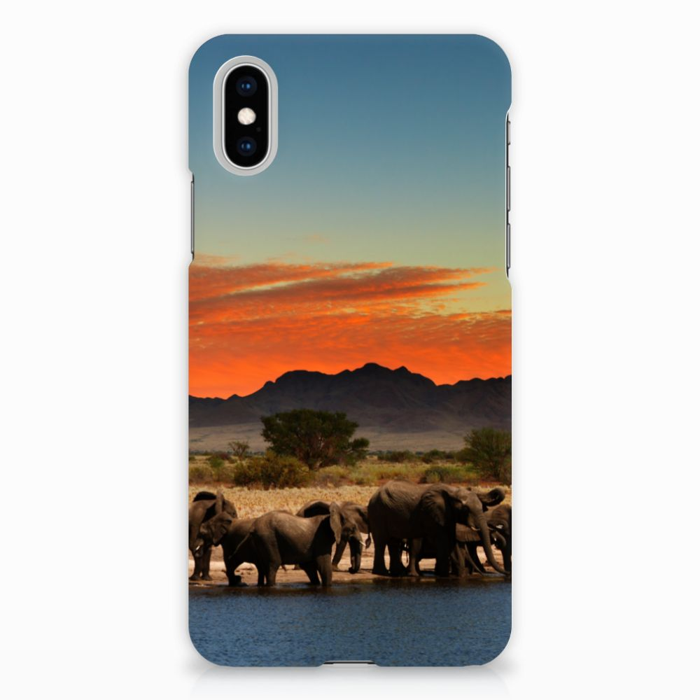 Apple iPhone X | Xs Hardcase Hoesje Design Olifanten
