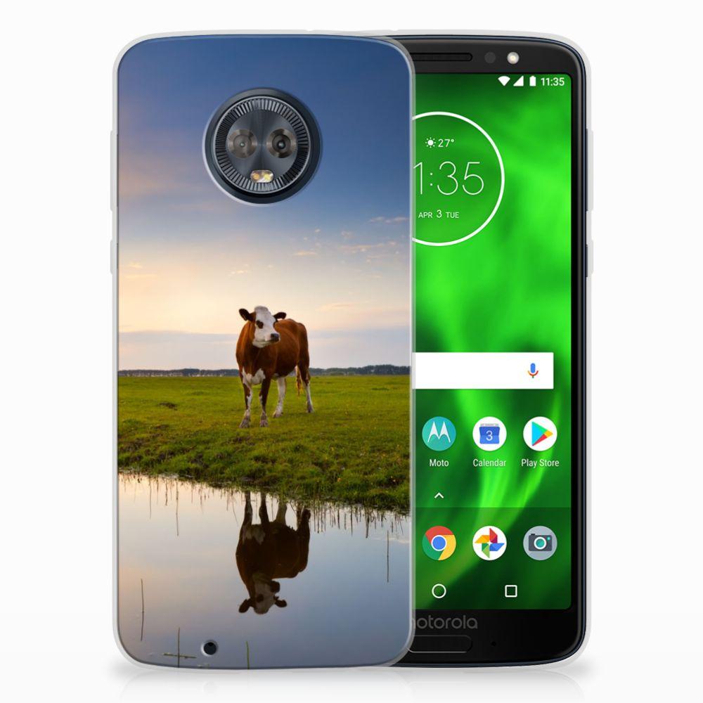 Motorola Moto G6 TPU Hoesje Design Koe