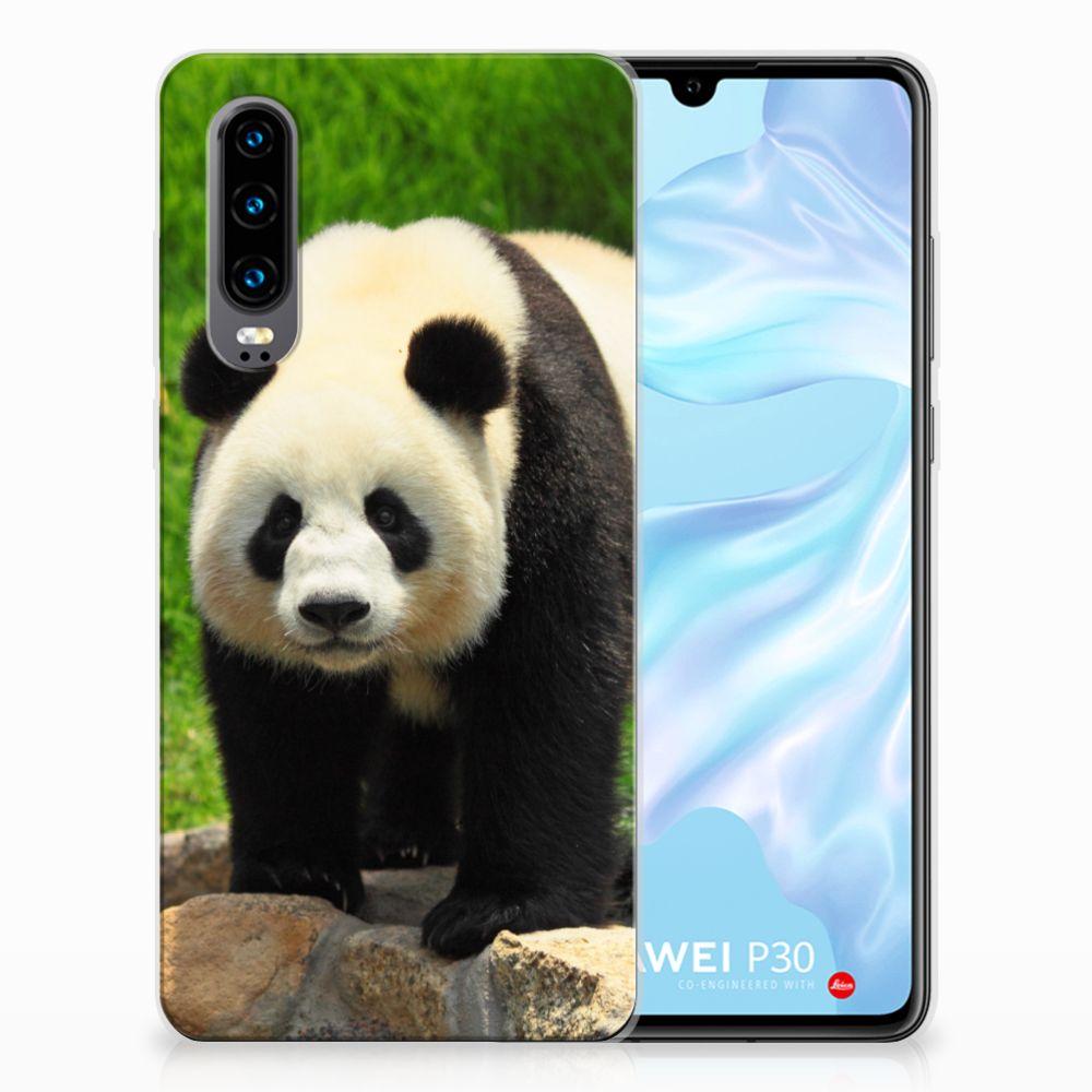 Huawei P30 TPU Hoesje Design Panda