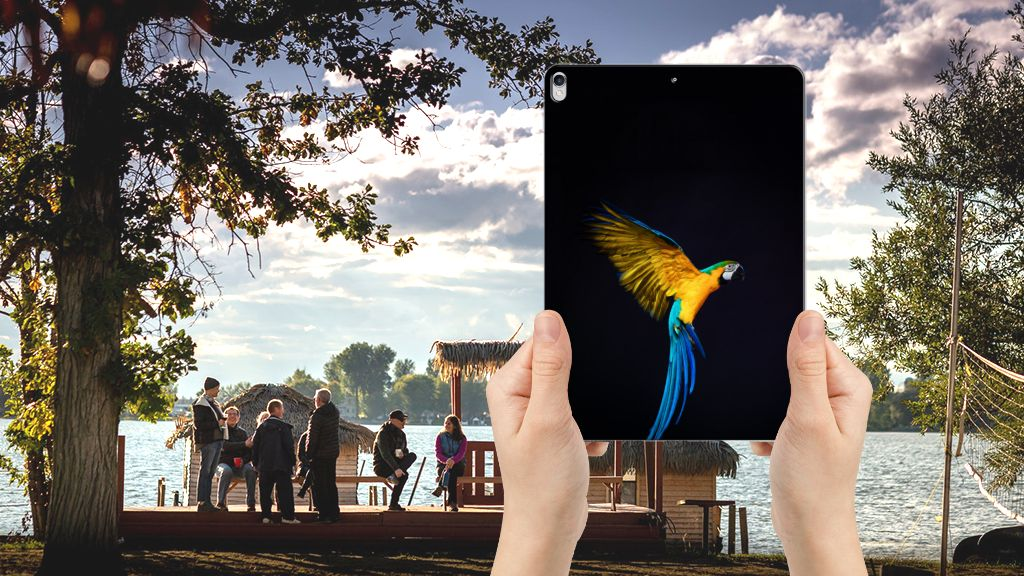 Apple iPad Pro 10.5 Back Case Papegaai