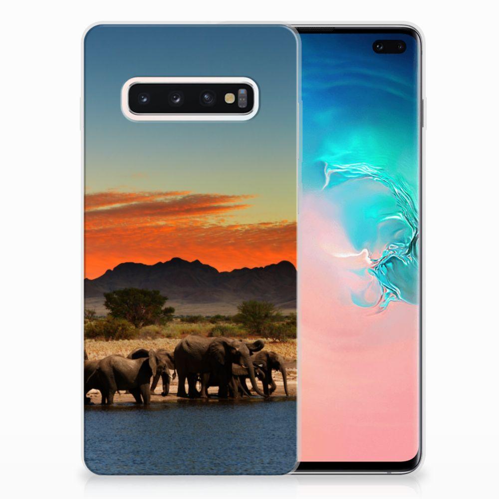 Samsung Galaxy S10 Plus TPU Hoesje Olifanten
