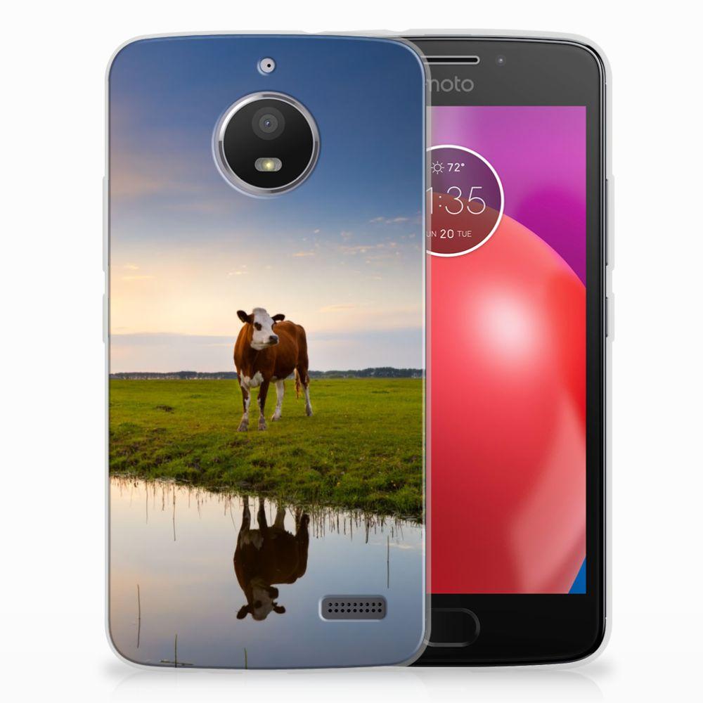 Motorola Moto E4 TPU Hoesje Design Koe