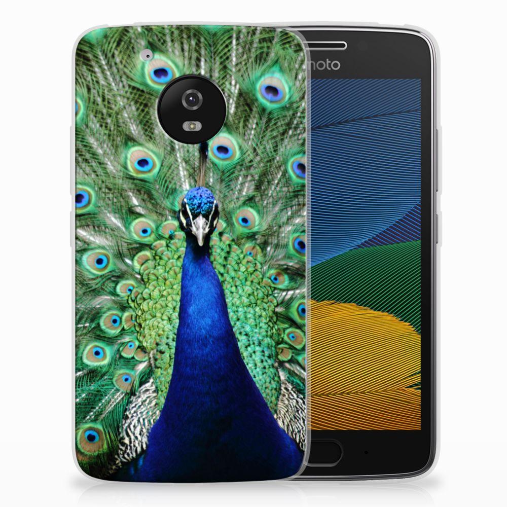 Motorola Moto G5 TPU Hoesje Pauw