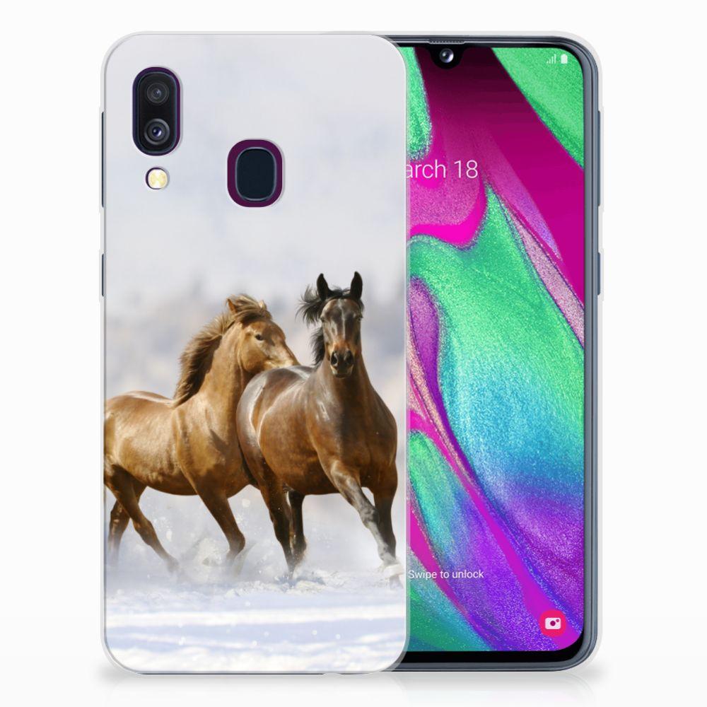 Samsung Galaxy A40 Leuk Hoesje Paarden