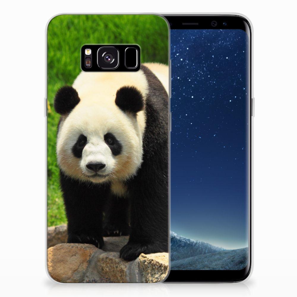 Samsung Galaxy S8 TPU Hoesje Panda
